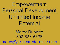 rodan + fields home based business